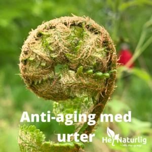 Anti-aging med urter